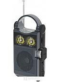 Радиоприемник Ritmix RPR-333 (черный)