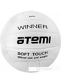 Мяч Atemi Winner