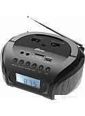 Портативная аудиосистема Ritmix RBB-020BT