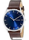 Наручные часы Skagen SKW6237
