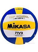 Мяч Mikasa ISV-100TS (5 размер)